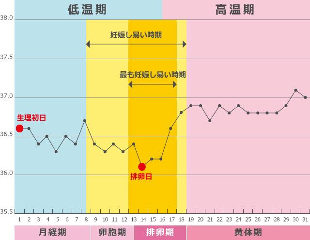 生理周期グラフ
